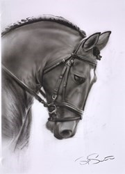 Dark Horse II by Steven Smith -  sized 17x23 inches. Available from Whitewall Galleries